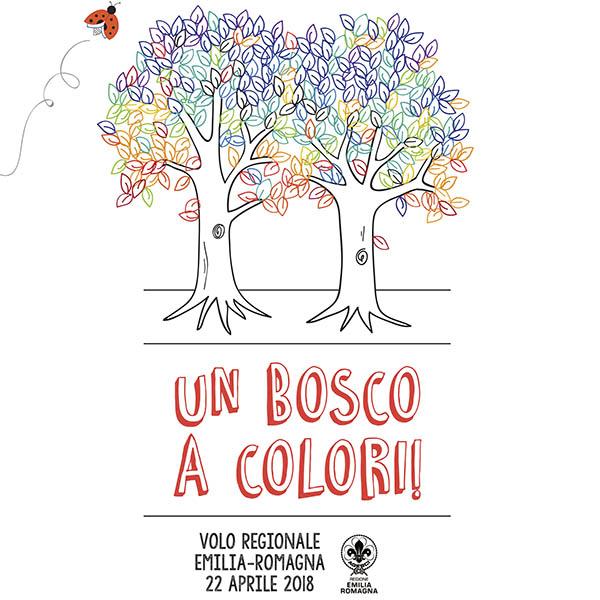 Un Bosco A Colori Volo Regionale Agesci Emilia Romagna