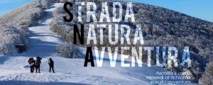 Strada - Natura - Avventura (-E) @ Foreste Casentinesi